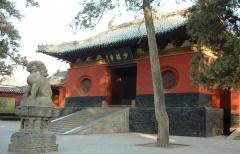 La grande famille des Arts Martiaux Chinois